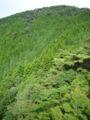 Mt nishiotafuku02s2816.jpg