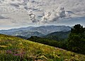 NEA 9460-7x5-Sierra Blanca (22021222015).jpg