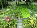 NLS-Garten 4.JPG
