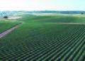 NRCSCA00002 - California (519)(NRCS Photo Gallery).jpg