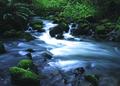 NRCSOR02011 - Oregon (5871)(NRCS Photo Gallery).tif