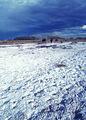 NRCSUT03051 - Utah (6471)(NRCS Photo Gallery).jpg