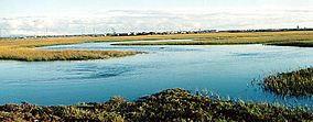 NWS seal beach wildlife refuge.jpg