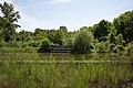 Nationalpark Donau-Auen Lobau Nationalparkhaus Teich Mai 2016 01.jpg