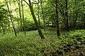 Natural monument Pod lesem in summer 2014 (7).JPG