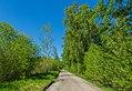 Naturschutzgebiet Emsdettener Venn Hindenburgweg 03.jpg