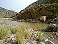 Navidhand new 350 - panoramio.jpg
