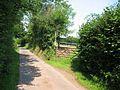 Near Llanveynoe - geograph.org.uk - 73938.jpg