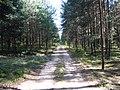 Nemunaičio sen., Lithuania - panoramio (16).jpg