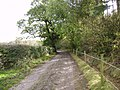New Close Lane - geograph.org.uk - 264050.jpg