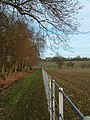 New Fence Along Footpath - geograph.org.uk - 311535.jpg