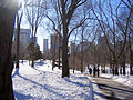 New York. Central Park. Snowy (2796952131).jpg