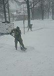 New York National Guard (24543490166).jpg