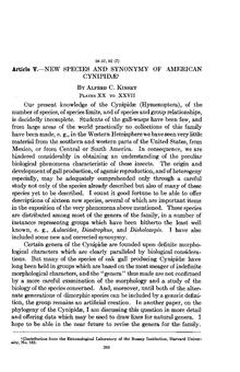 New species and synonymy of American Cynipidæ.pdf