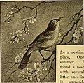 News from the birds (1898) (14563874150).jpg