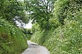 North Molton, lane near Coombeshead - geograph.org.uk - 464847.jpg