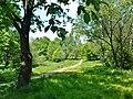 Nowy Bieżanów - Park.JPG