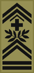 OR-9c - Adjudant-Chef