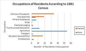 Hunsonby - Occupations of Residents in Hunsonby, According to the 1881 Census. Shows both sexes.
