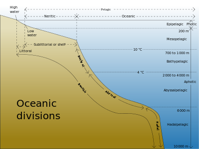 Drawing showing divisions according to depth and distance from shore