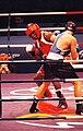 Olanda Anderson avoids a jab from his opponent Rudolf Kraj, 2000.jpg