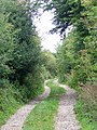 Old Shaston Drove, Compton Down - geograph.org.uk - 1452221.jpg