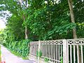 Oleksandria dendropark May 2016 3.jpg