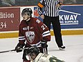 Ontario Hockey League IMG 1087 (4470703755).jpg