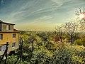 Opole, Poland - panoramio (118).jpg
