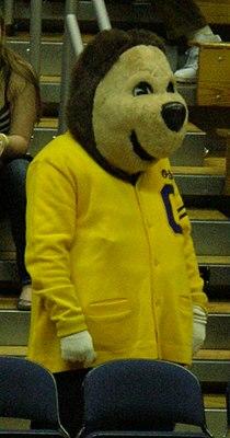 Oski at 2008 Golden Bear Classic championship game 2.JPG
