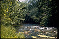 Ozark National Scenic Riverways OZAR2079.jpg