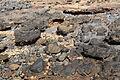Pájara - FV-2 - Punta del Roquito 05 ies.jpg