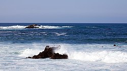 Pacific grove (6542363659).jpg