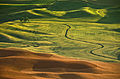 Palouse - American Tuscany.jpg