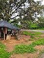 Panna, Madhya Pradesh 485661, India - panoramio (2).jpg