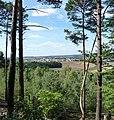 Panoramaweg mit Blick auf Alsenborn - panoramio.jpg