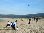 Papaventos na praia do Rostro 2, 5 xaneiro 2013.jpg