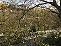 Parc de Vallparadís, torrent de les Bruixes.jpg