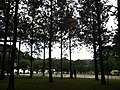 Parque da Cidade - Jundiaí - panoramio (49).jpg