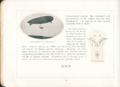 Parseval-Broschuere-20.png