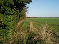 Path across Fulbourn fen - geograph.org.uk - 1039302.jpg
