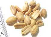 Jordnødder er bælgplanter og valnødder er stenfrugter, ikke botaniske nødder, men kaldes nødder når det handler om dem som levnedsmidler.