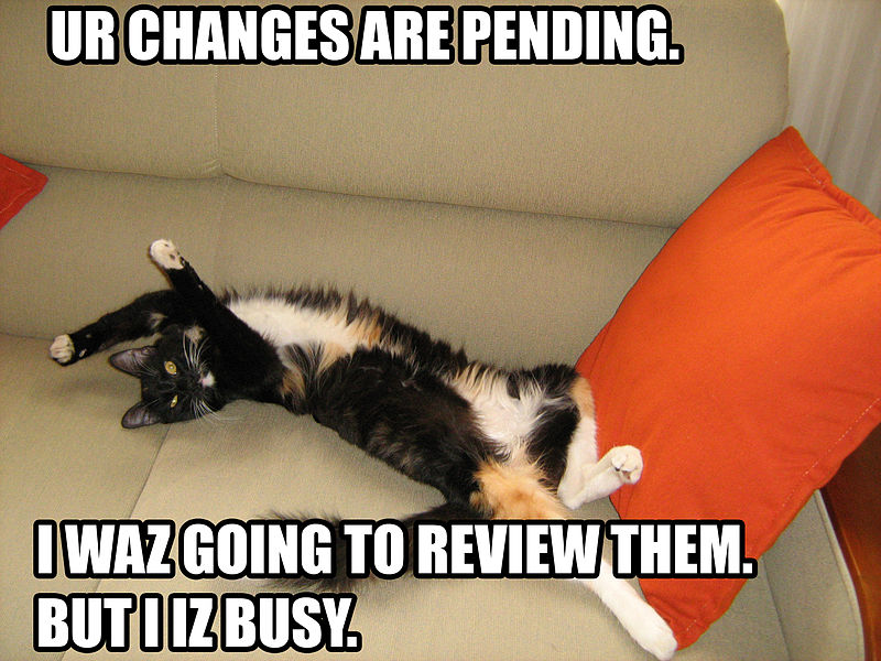 File:Pending Changes Cat.jpg