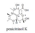 Penicitrinol K.png
