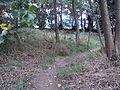 Penistone Drive footpath, Little Sutton 2.JPG
