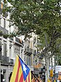 Pere Llibre P1160149.JPG