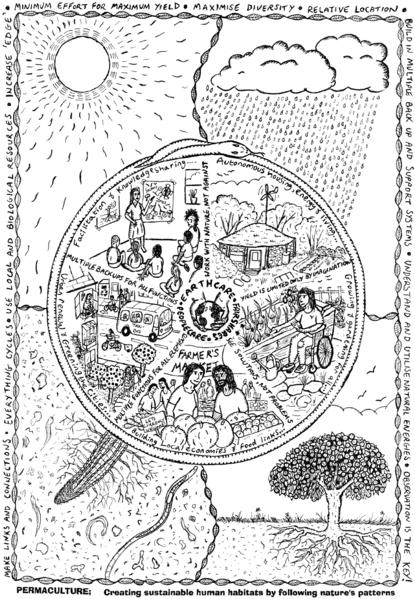 mandala da permacultura