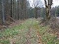 Permissive path, High Wood - geograph.org.uk - 1705796.jpg