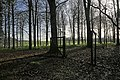 Pheasant pens in Thorny Down Wood - geograph.org.uk - 303574.jpg