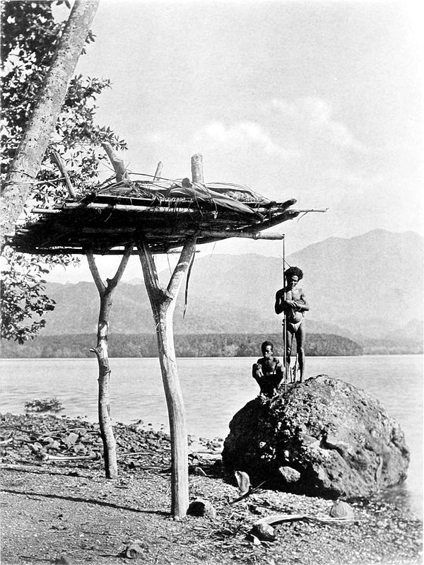 Black and white photograph of a log platform held up by two Y-shaped branches planted into the ground on a beach. To one side, a man and a boy stand on a rock.